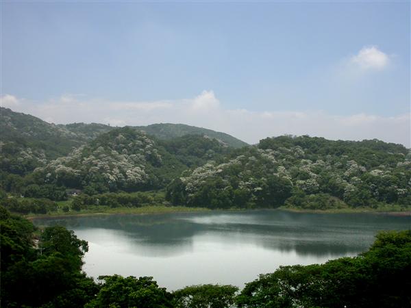 苗栗 西湖渡假大飯店_景觀_景觀