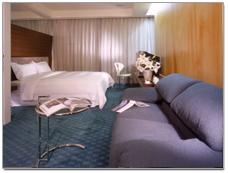 台南 愛丁堡汽車旅館_客房_現代房型