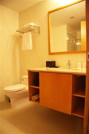 台南 富信大飯店_客房_標準客房-浴室