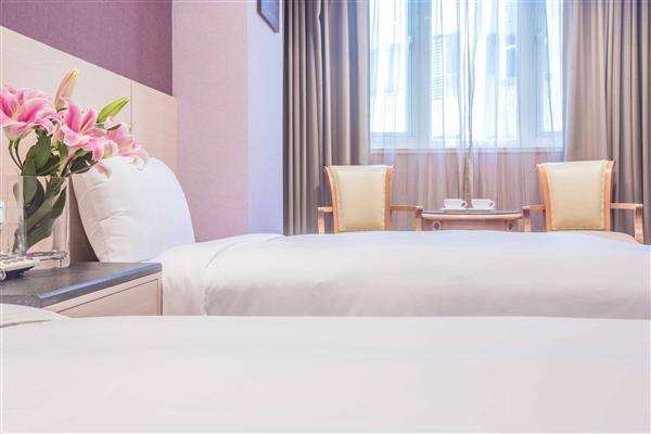 花蓮 國廣興大飯店_客房_客房 標準雙床房