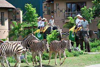 国外订房 印尼 峇里岛  峇里岛野生动物园和海洋公园马拉河畔饭店