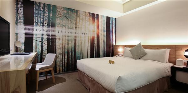 台北 丹迪旅店【大安森林公園店】_客房_標準客房