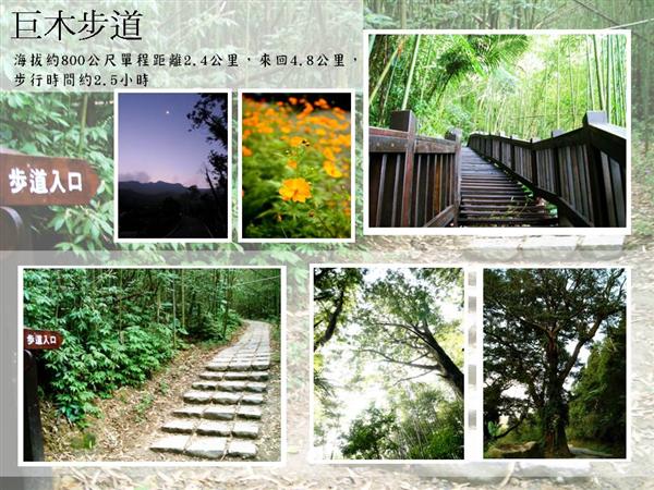 新竹尖石峇里森林溫泉度假村_環境_環境