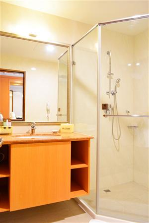 台南 富華大飯店_客房_雅緻客房-浴室