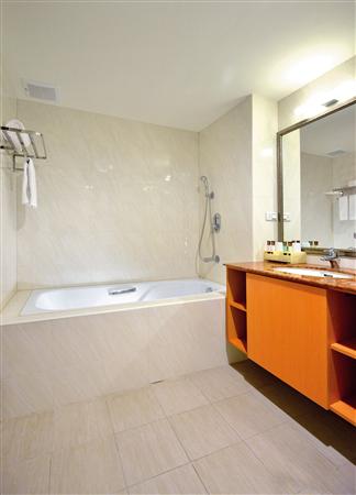 台南 富華大飯店_客房_麗緻客房-浴室