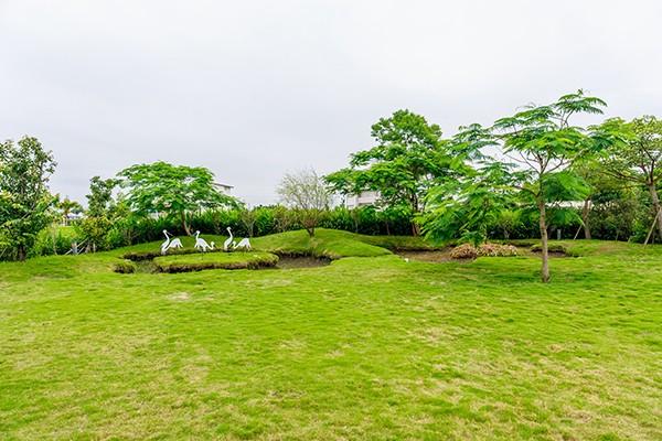輕塵別院民宿_環境_環境