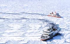 【北海道破冰船】就是愛玩雪、冰上釣魚、企鵝遊行、熊出沒、函館璀璨夜景、北狐傳說 5日(旭川/函館)