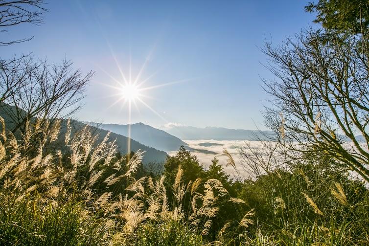 太平山翠峰湖。森動一世紀2日