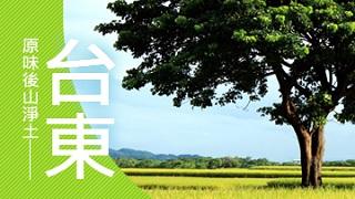 【立榮假期-FUN假趣旅行】台東精選飯店自由行
