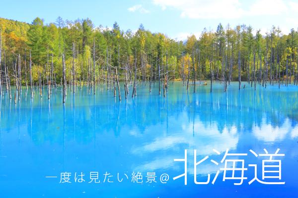 【神秘機票】北海道計劃票5日