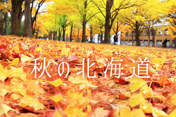 【Scoot✈名湯首選】層雲峽溫泉+札幌市區飯店 5天2夜自由行