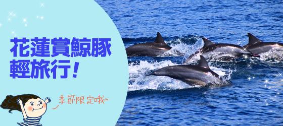 【立榮假期】花蓮賞鯨豚輕旅行