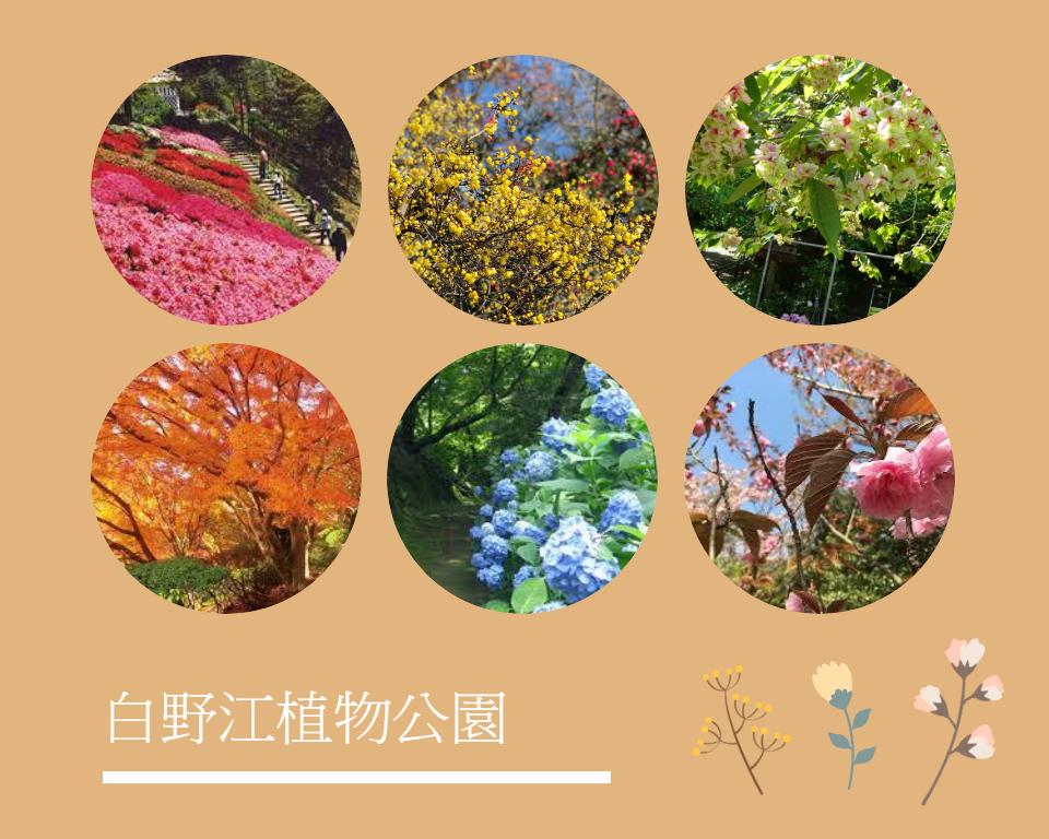 北九州白野江植物公園