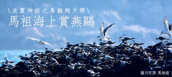 【立榮假期】馬祖海上賞燕鷗自由行(北竿進出)