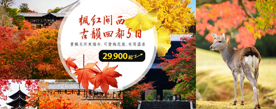 關西四都楓紅5日 29,900起、期間限定 秋季賞楓~ezfly易飛旅遊