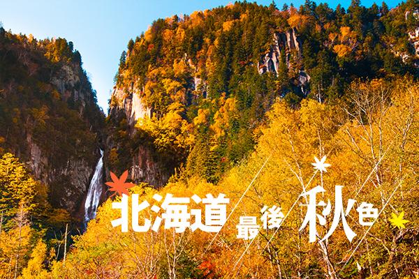 北海道、層雲峽楓葉