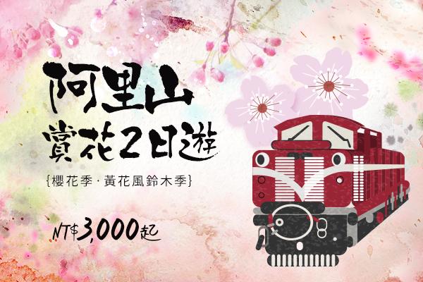 阿里山賞最美櫻花