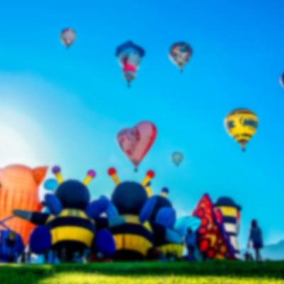 台東套裝行程、保證有熱氣球升空票 5450元起