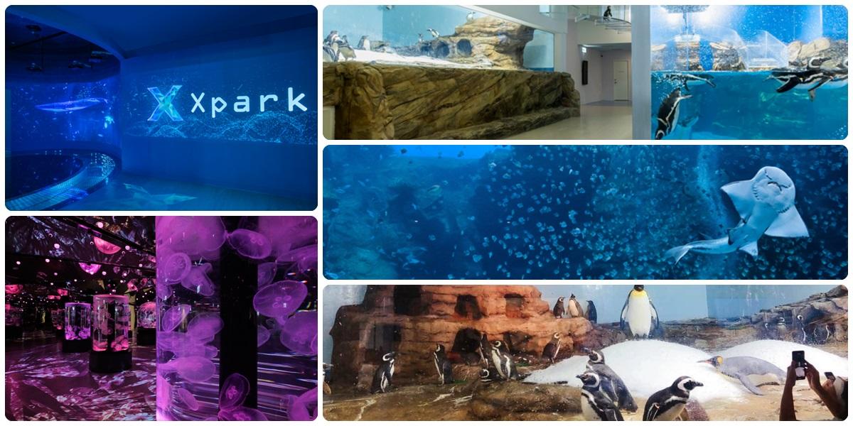 Xpark水族館