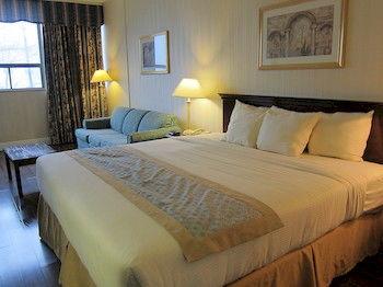 多倫多機場廣場飯店 Toronto Plaza Airport Hotel
