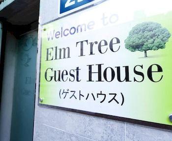 首爾明洞榆樹旅館 Elm Tree Guest House Myeongdong