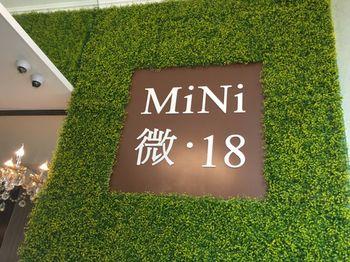 微 18 Mini 18