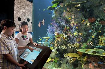 Aqua Center